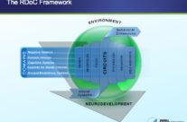 Research Domain Criteria (RDoC) Graphic