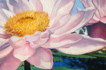 Water Lily Detail